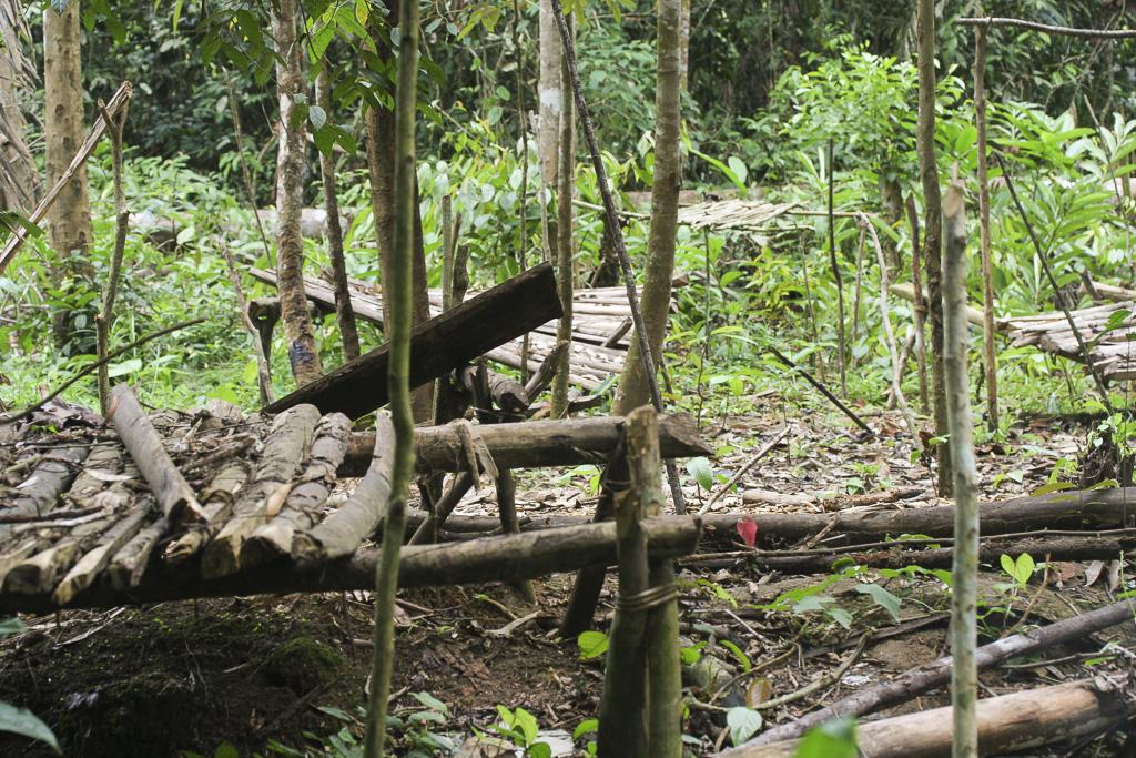 Deep in the jungle, an abandoned temporary settlement for fruit´s gathering season. Jungle Area of Bukit Duabelas National Park. Jambi province. Sumatra. Indonesia.