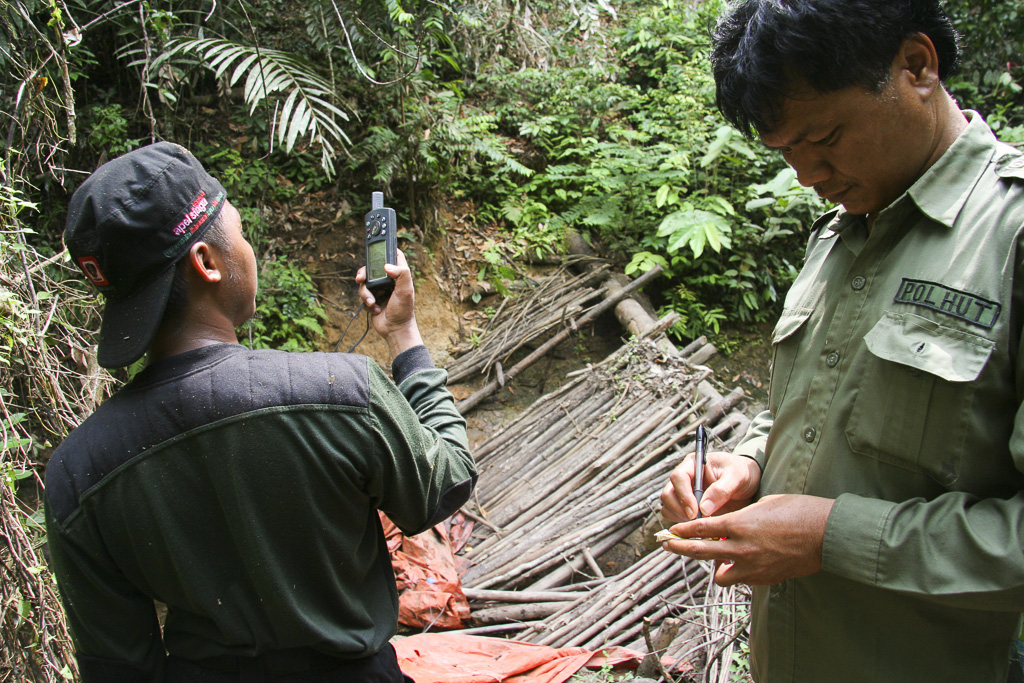 Ranger introducing coordinates in a GPS. It´s a rudimentary dam used by illegal loggers to transport the logs with the strength of water.  Jungle Area of Bukit Duabelas National Park. Jambi province. Sumatra. Indonesia.