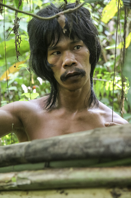 Orang rimba man in the jungle with the rattan he collected in the foreground. Jungle Area of Bukit Duabelas National Park. Jambi province. Sumatra. Indonesia.