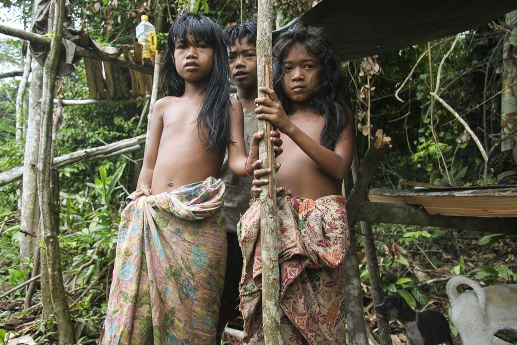 Orang rimba kids at their home. Jungle Area of Bukit Duabelas National Park. Jambi province. Sumatra. Indonesia.
