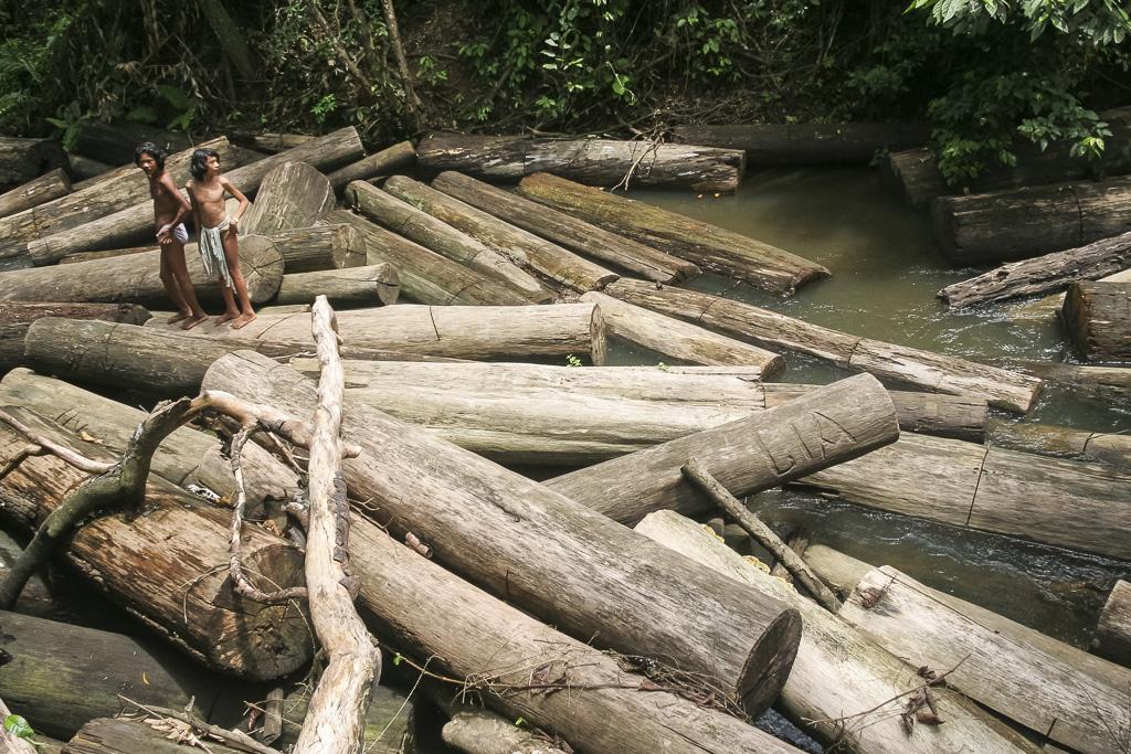 Orang rimba boys at the river plenty of abandoned illegal logs. Jungle Area of Bukit Duabelas National Park. Jambi province. Sumatra. Indonesia.