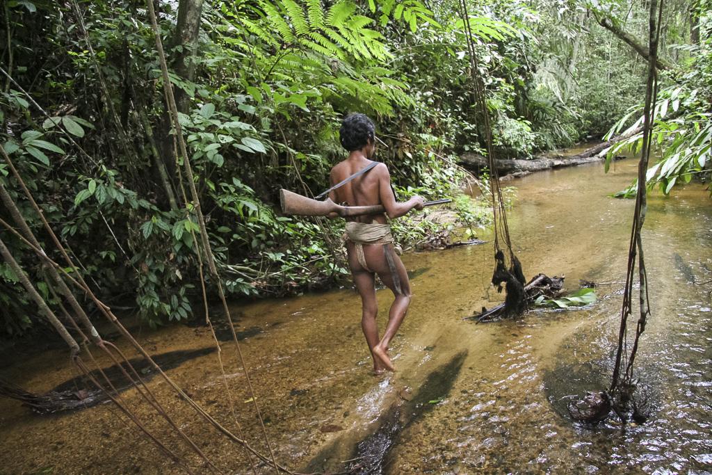 Orang rimba man in the jungle looking for a prey. Jungle Area of Bukit Duabelas National Park. Jambi province. Sumatra. Indonesia.