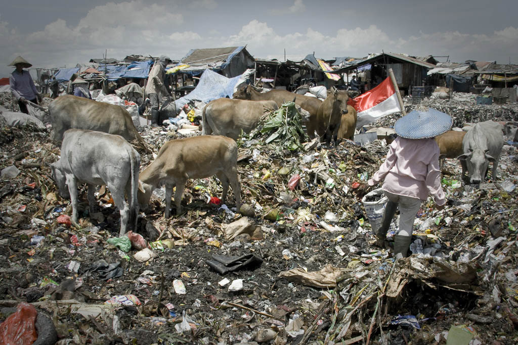 Indonesian shiny flag flew sarcastically surrounded by garbage. Makkasar dump. Indonesia.